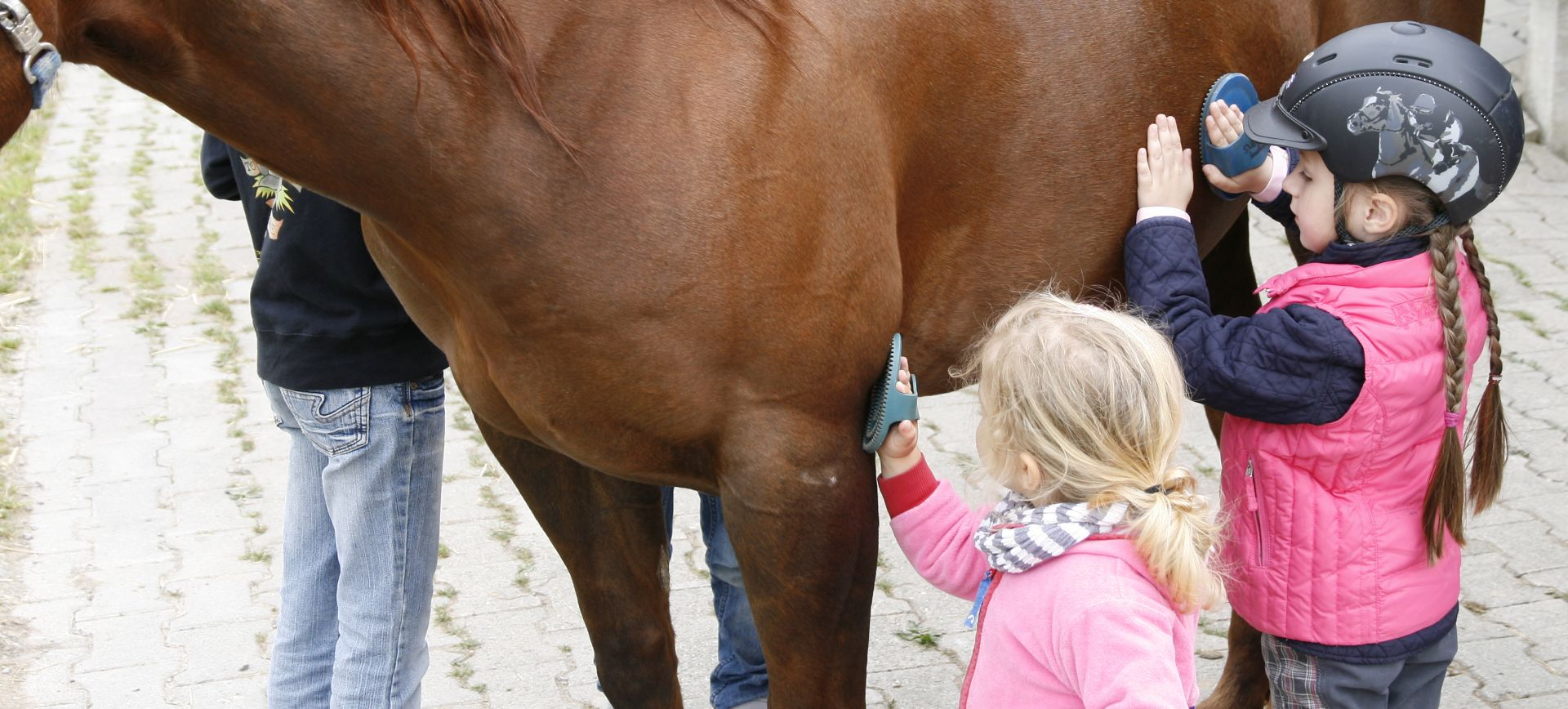Bambini Pferdeschmusekurs